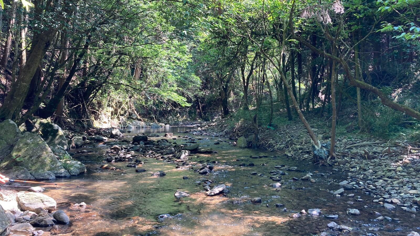 渓流釣り入門1